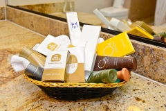 Bathroom Toiletries Basket